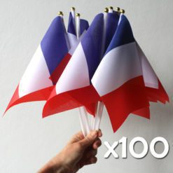 100 French Flags